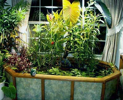 Small corner patio goldie pond filtration - Corner pond ideas ...